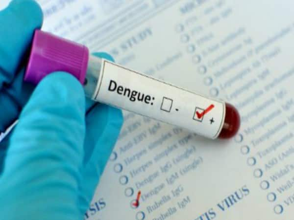 be alert and stay away from dengue