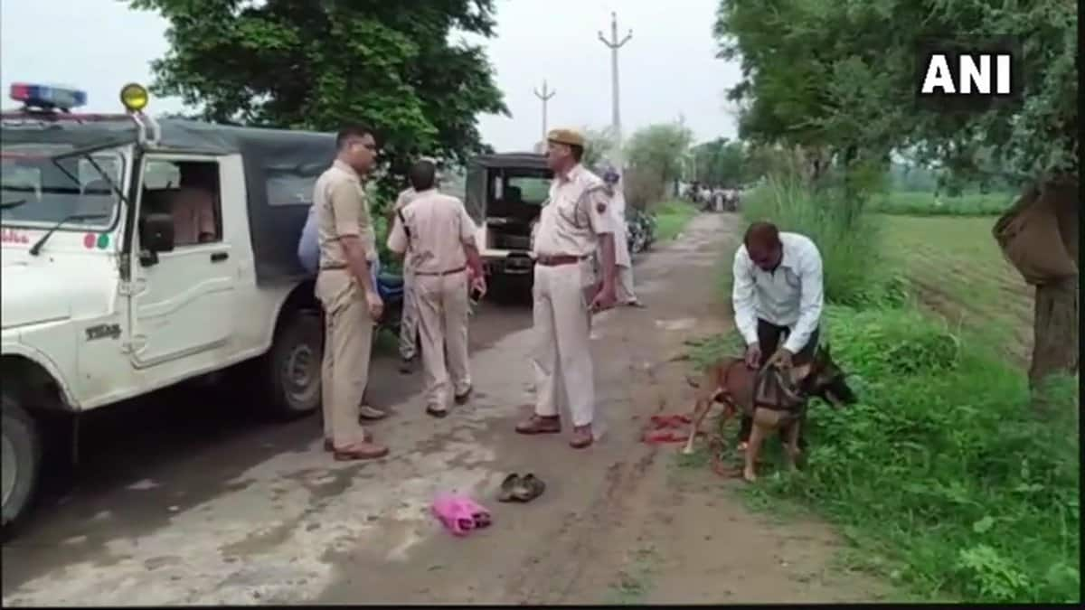 Mob lynching in Alwar, man beaten to death on suspicion of cow smuggling
