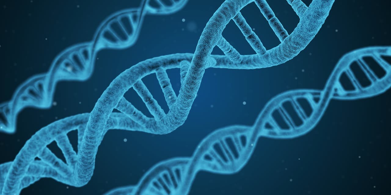Scientists identify 1,300 genes that can decide your level of education