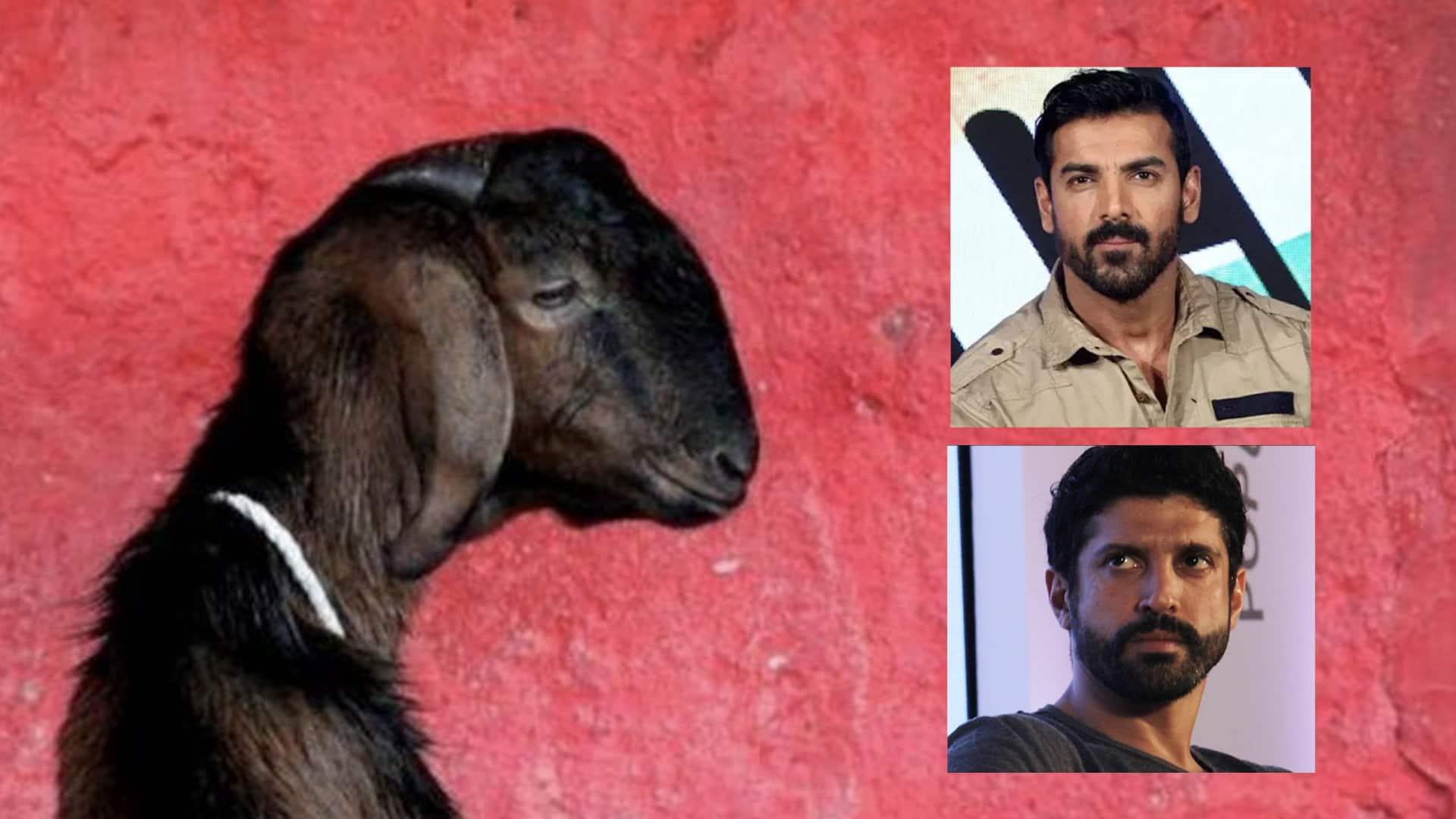 Goat gang rape John Abraham wants capital punishment for guilty Farhan Akhtar shocked