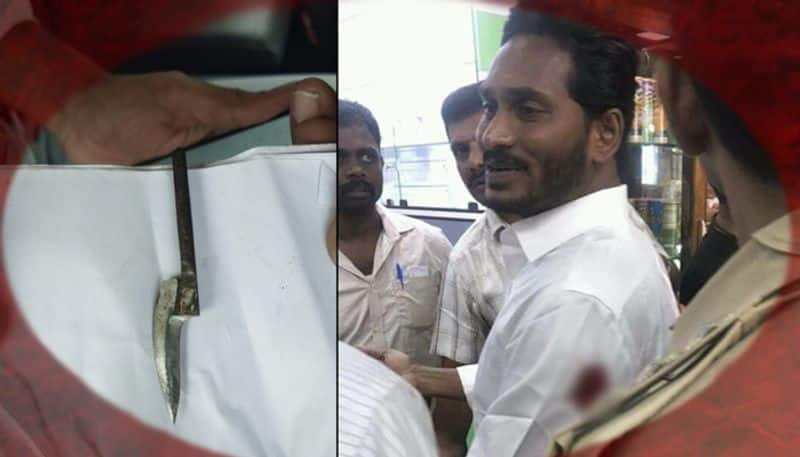 Jagan Mohan Reddy wants 'independent' body to investigate the attack