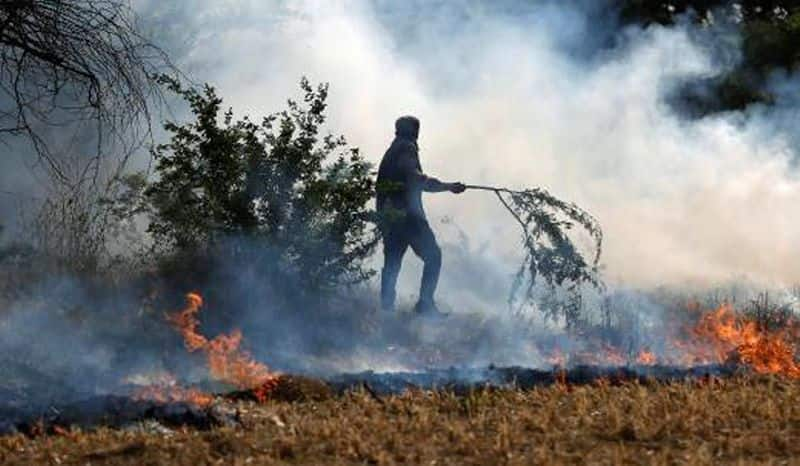 stubble-burning-to-continue-for-8-to-9-more-days-say-punjab-haryana