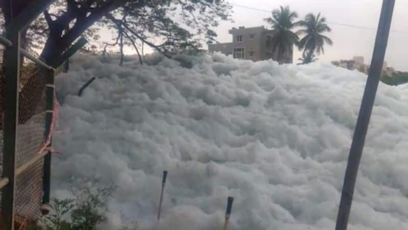 NGT slaps Karnataka government with Rs 50 crore fine for failing to protect lakes