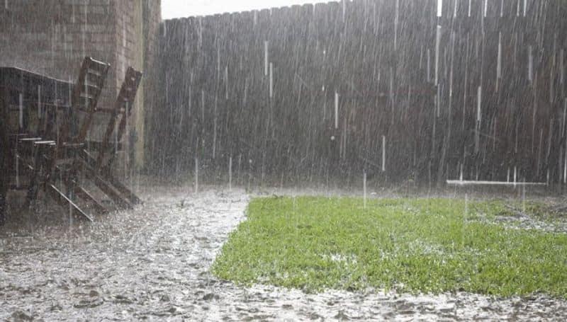 peiti cyclone in tamilnadu 24 hour rain conformed