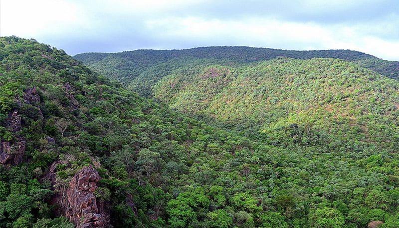 Karnataka Govt Okays Mining in Ballari Reserve Forest