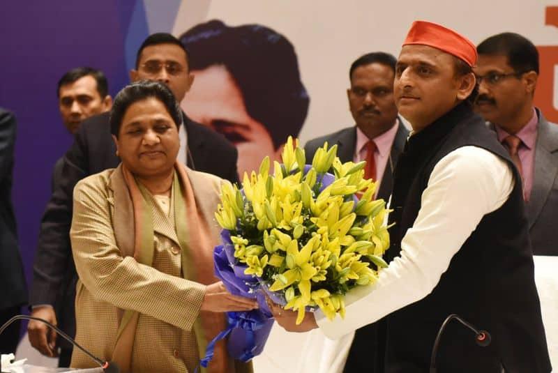 SP-BSP alliance a bid to save disproportionate assets of Yadavs, Mayawati