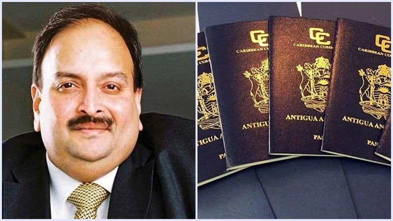 Mehul choksi left Indian citizenship, Indian government will face problem to deport him