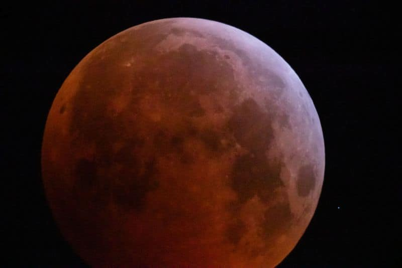 Super blood wolf moon: Twitter users share incredible pictures of the lunar extravaganza