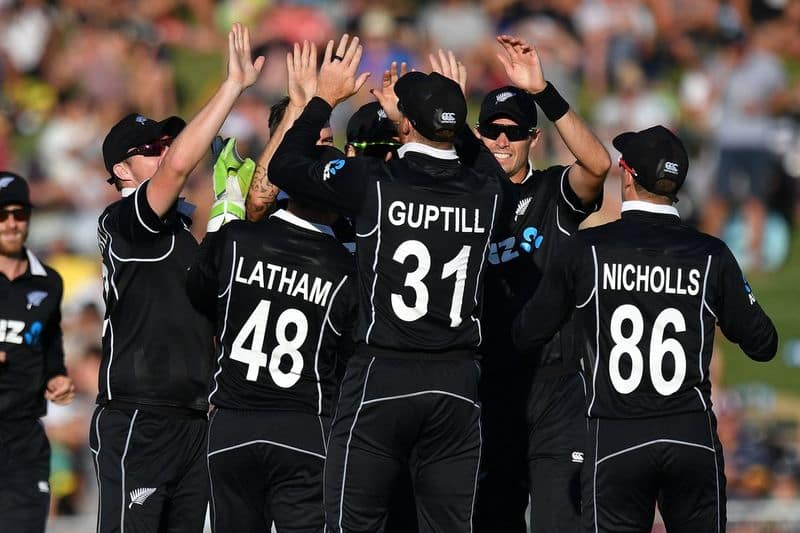 new zealand captain kane williamson opinion about world cup 2019