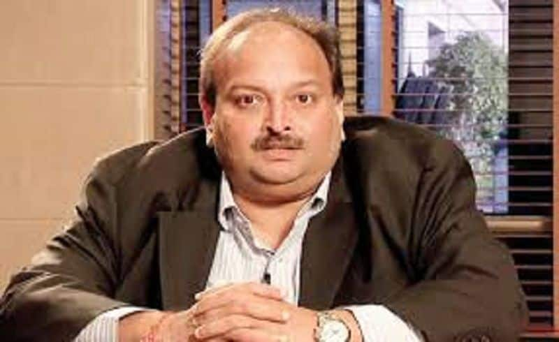 Mehul choksi is not only defaulter of pnb but he also took loan from sbi
