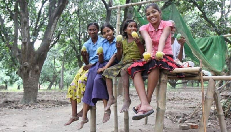 Why this Bihar village plants mango trees each time a girl is born