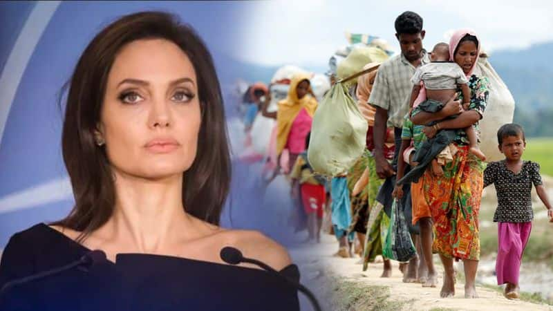 Angelina jolie appeal to end violence against rohingya muslims