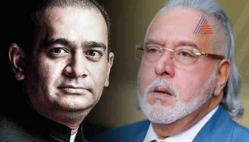 Not only Mallya and Nirav 36 businessmen fled from country in recent past ED informs court