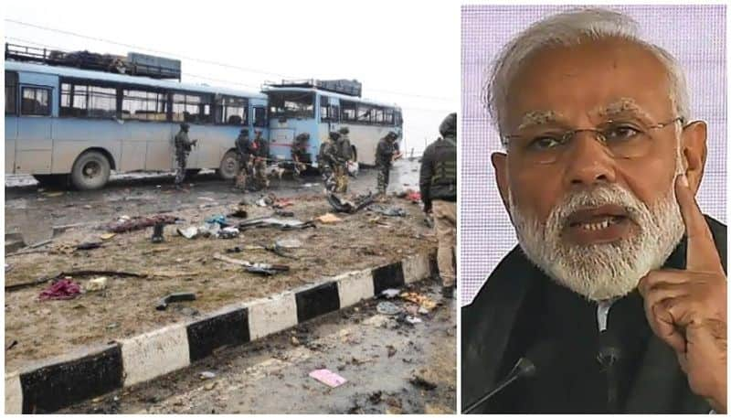 only Pakistan is not culprit for Pulwama attack