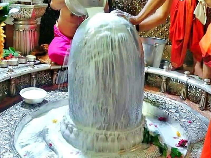 If you cannot do today, worship of Shiva, you have a another chance, you have to know, then when to worship