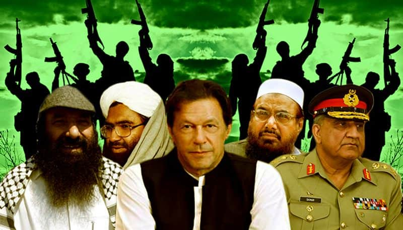 Pakistan is being compel to take action against their terrorist camps because of indian pressure