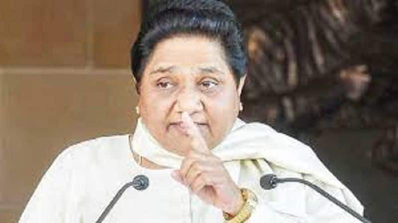 Mayawati rebuff Rahul Gandhi, dont spread delusion in state for alliance