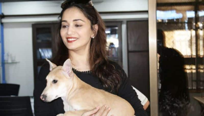Madhuri Dixit adopts a new family member just in time for International Day of Happiness