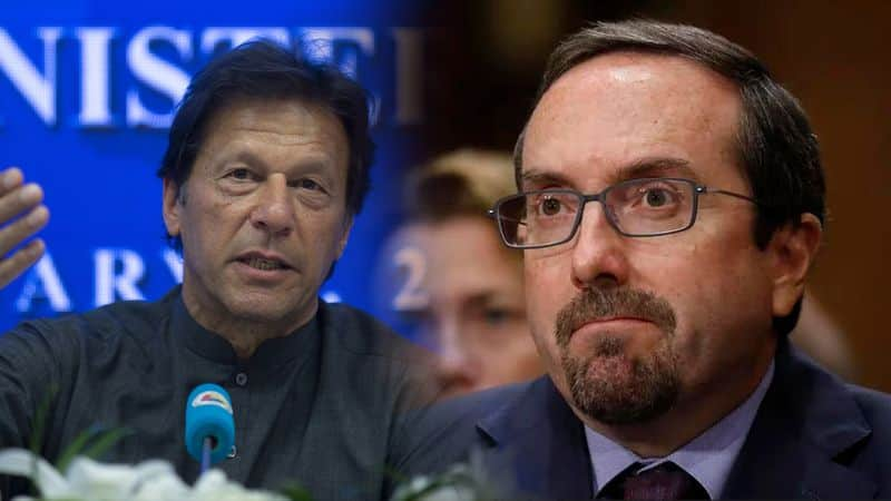 Resist temptation of ball-tampering with Afghan peace, US envoy of Kabul to Imran Khan