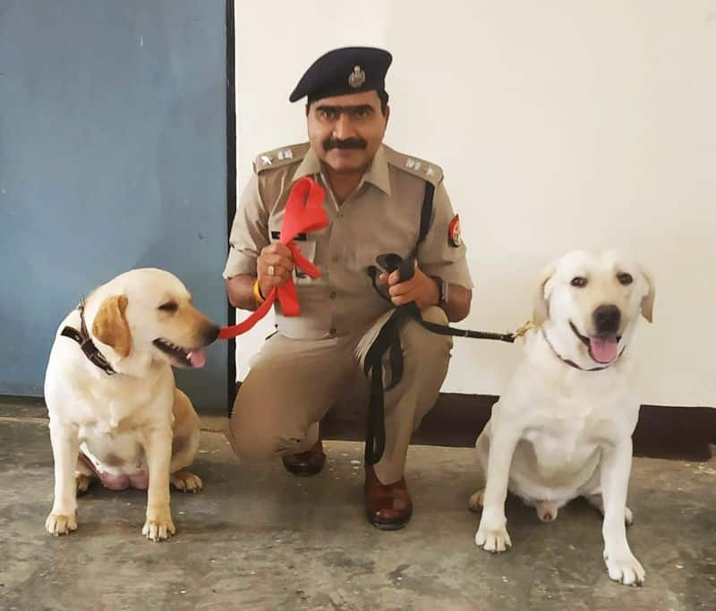 Sniffer dog of UP Police crack a blind murder and kidnapping case in Azamgarh