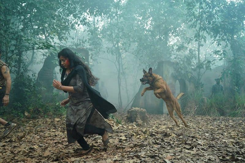 anna rajan about madhuraraja action sequence with dogs