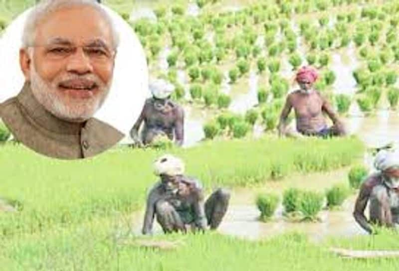 Modi government can give some special gifts to farmers