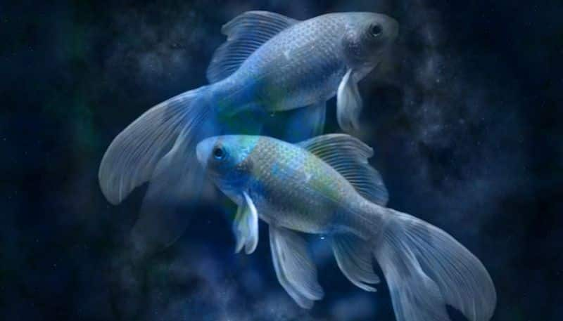 How will the month of Jayistha affect Pisces according to astrology