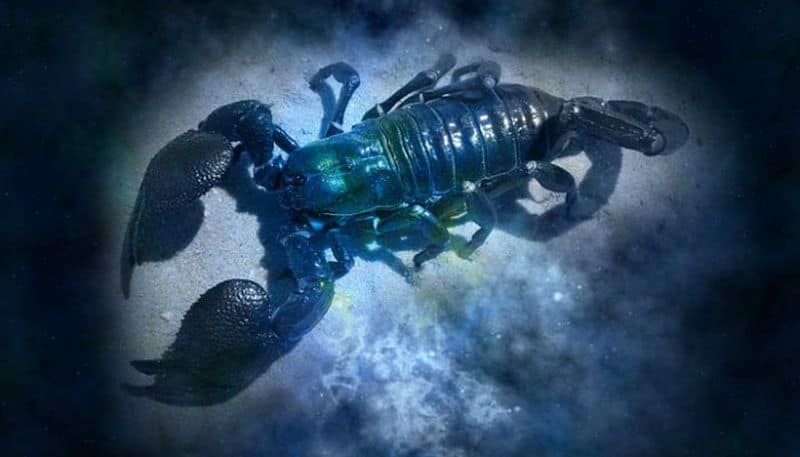 How will the month of May 2020 affect Scorpio  according to astrology