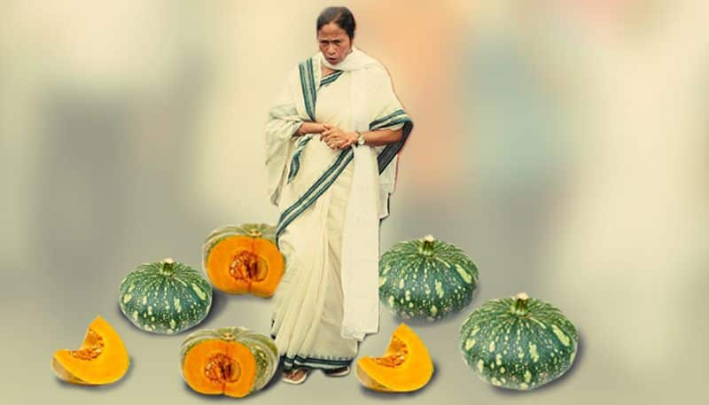 Why Mamata is afraid of pumpkins and not watermelons now