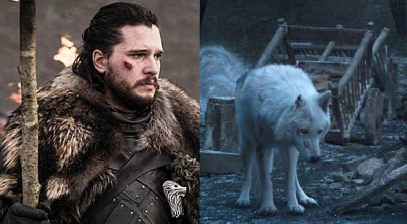 Game of Thrones Heres why Jon Snow didnt say bye to Ghost