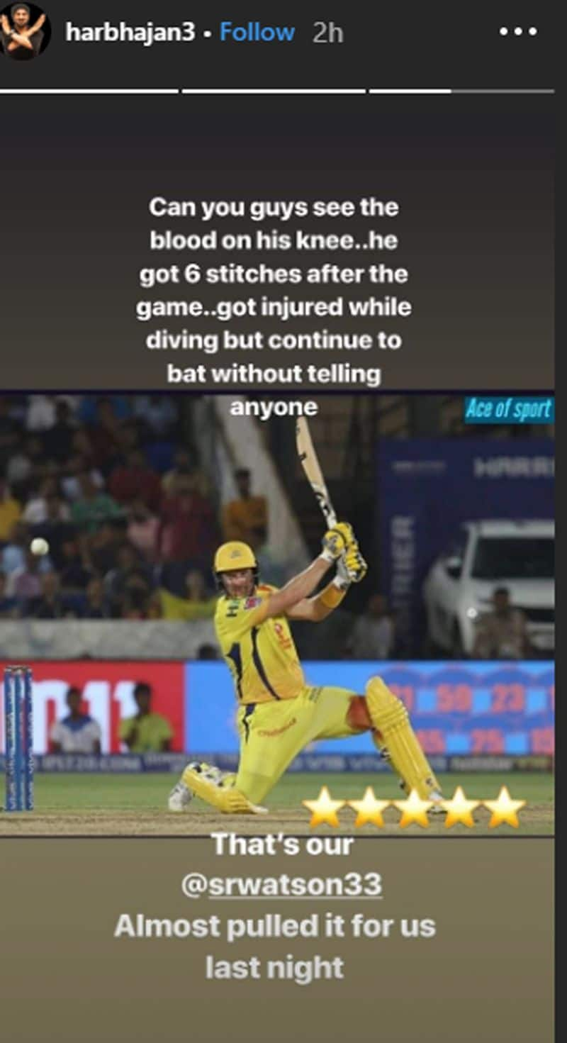 shane watson playing with bloodied knee revealed by harbhajan