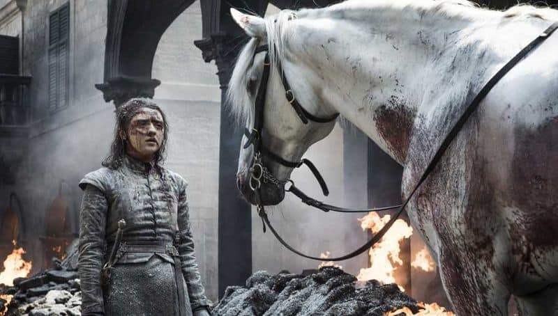Game of Thrones Fans come up with theories on Arya Starks horse scene