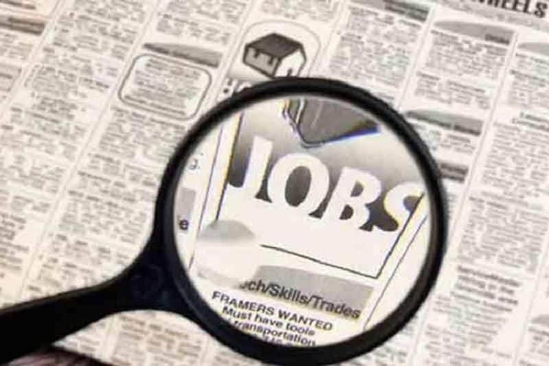 govt job announcement monthly salary  is rs 50000