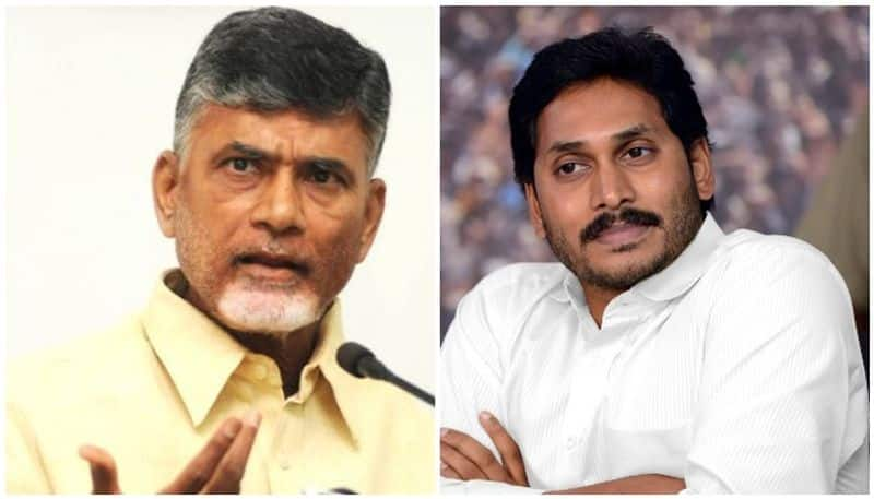 AP Local Body Elections: election commission lashes at inefficient and faulty officers