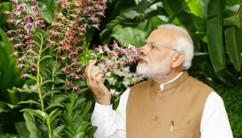 Modi orders action to central ministers