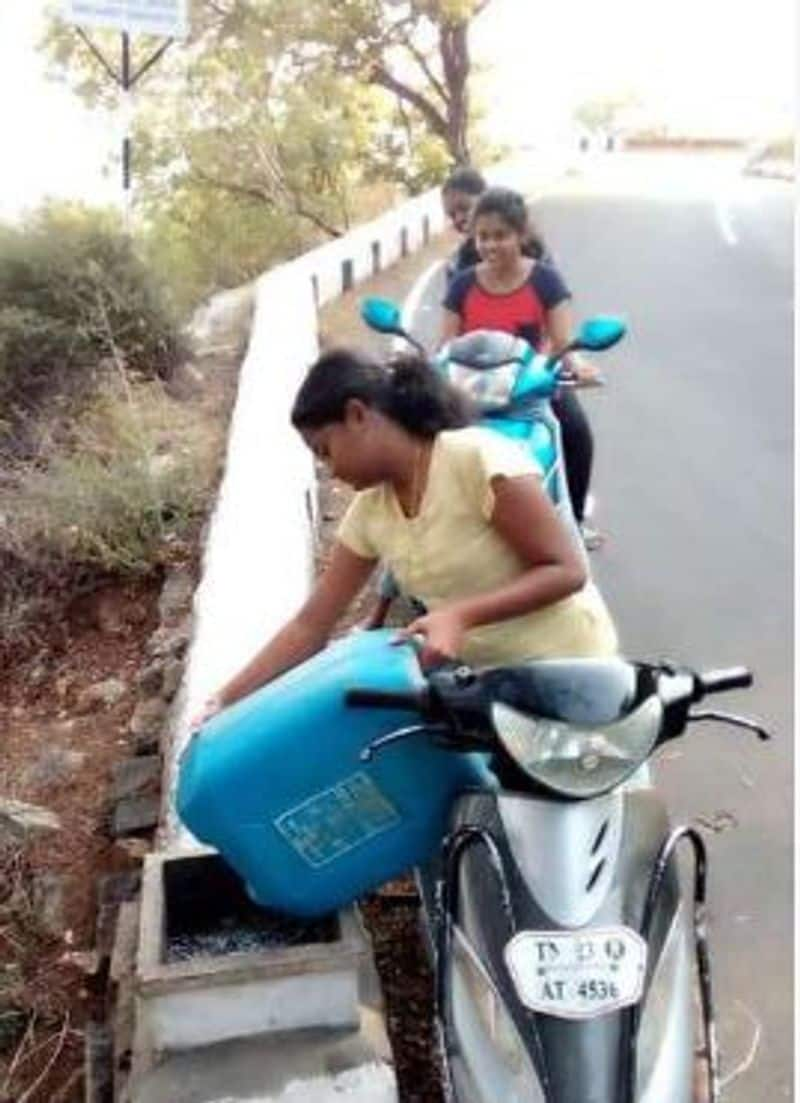 student rescue monkeys in yelagiri vellore district