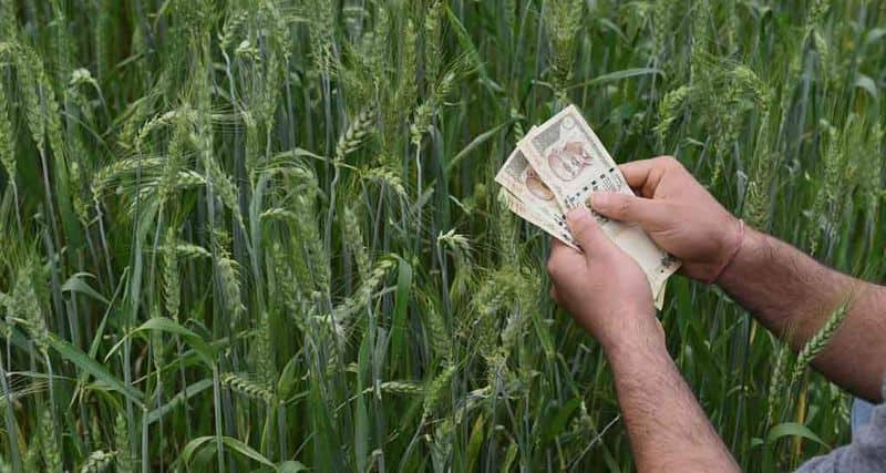 Strict Action Against Who Take Bribe From Farmers