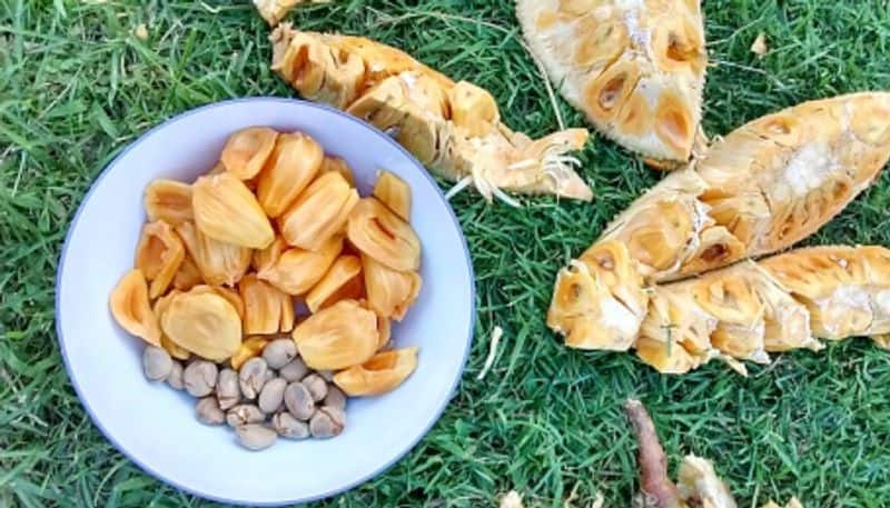 Here are some amazing health benefit of the seeds of Jack fruit