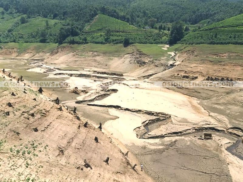 World's record if 10,000 check dams touted