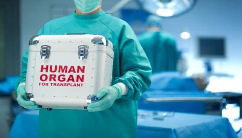 organs of a brain dead man was donated
