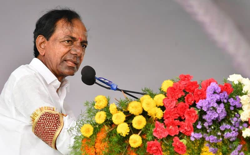 Telangana: Chief minister initiates 60-day action plan for cleanliness, greenery
