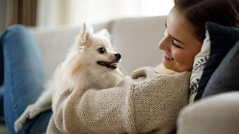 This model to marry a dog after dating 220 men