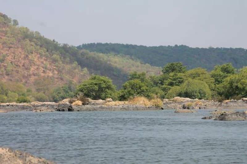Mekedatu Dam affair ... Basavaraj doll eager to shoot till Madurai court