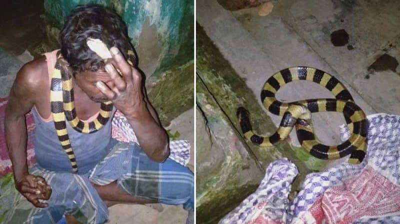 When the snake was killed, he reached jail