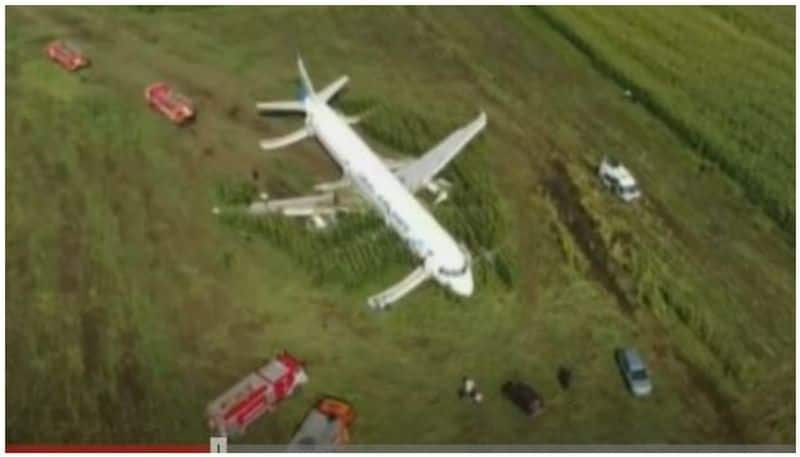 Pilot saves 233 lives by flying aircraft in cornfield, has become 'hero' in the world