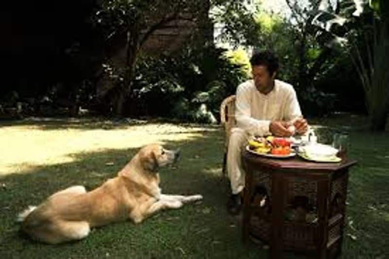 Imran Khan's new business, plans to earn money by selling dogs