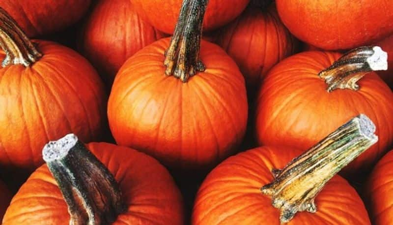 Farmer sent 2 Loads Of pumpkin to Dharmasthala Due to Price Drop snr