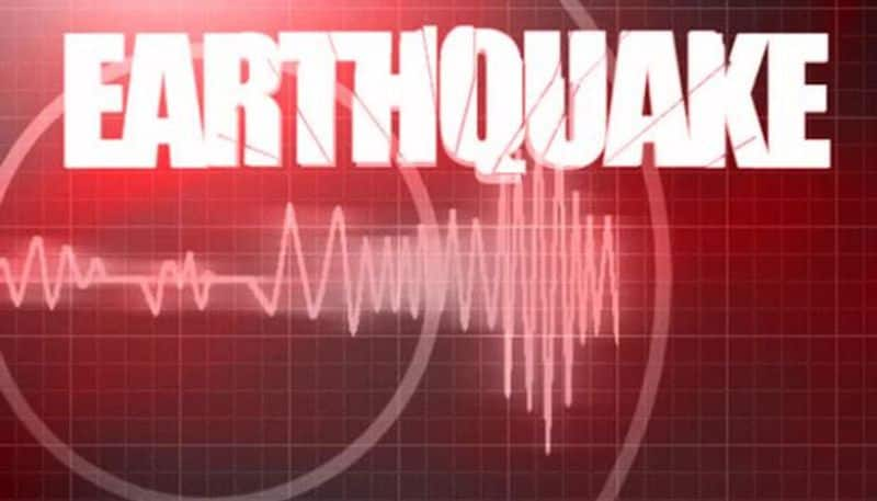 Himachal Pradesh Chamba district sees 4 earthquakes in one day no lives lost