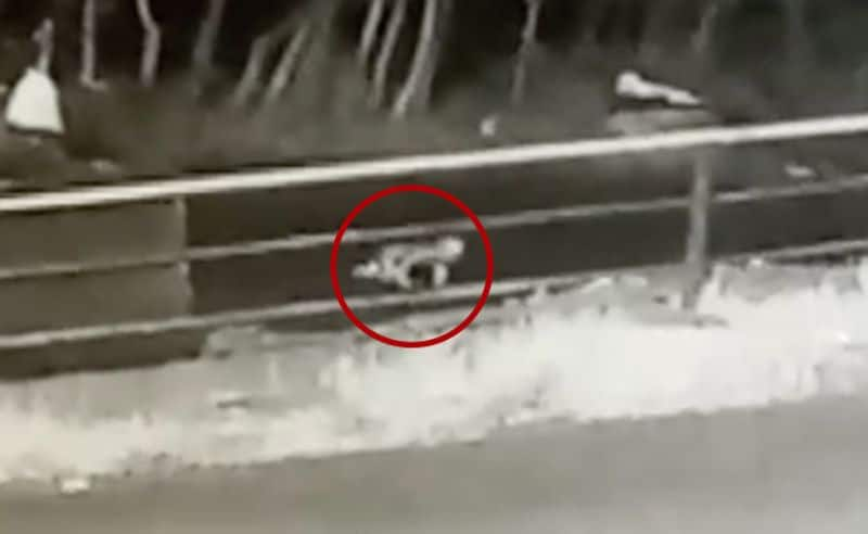 A Kid fall down from the jeep in kerala forest area