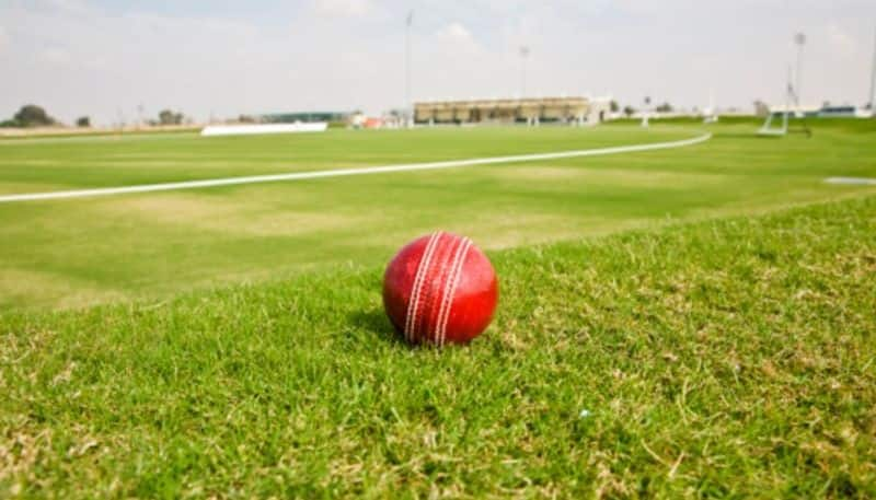 BCCI ACU chief Need match-fixing law legalise betting